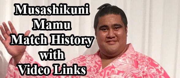 Musashikumi Mamu Header Image