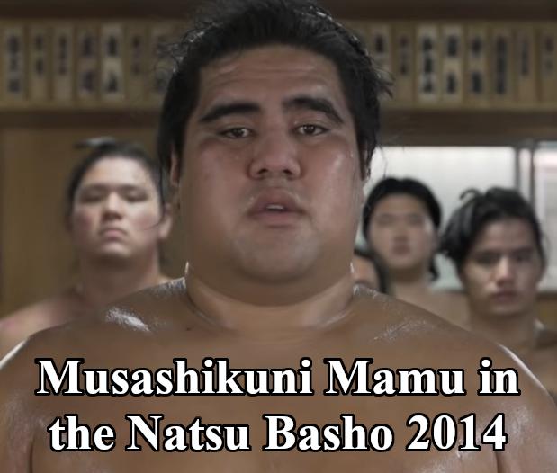 Musashikuni Mamu in the Natsu Basho 2014